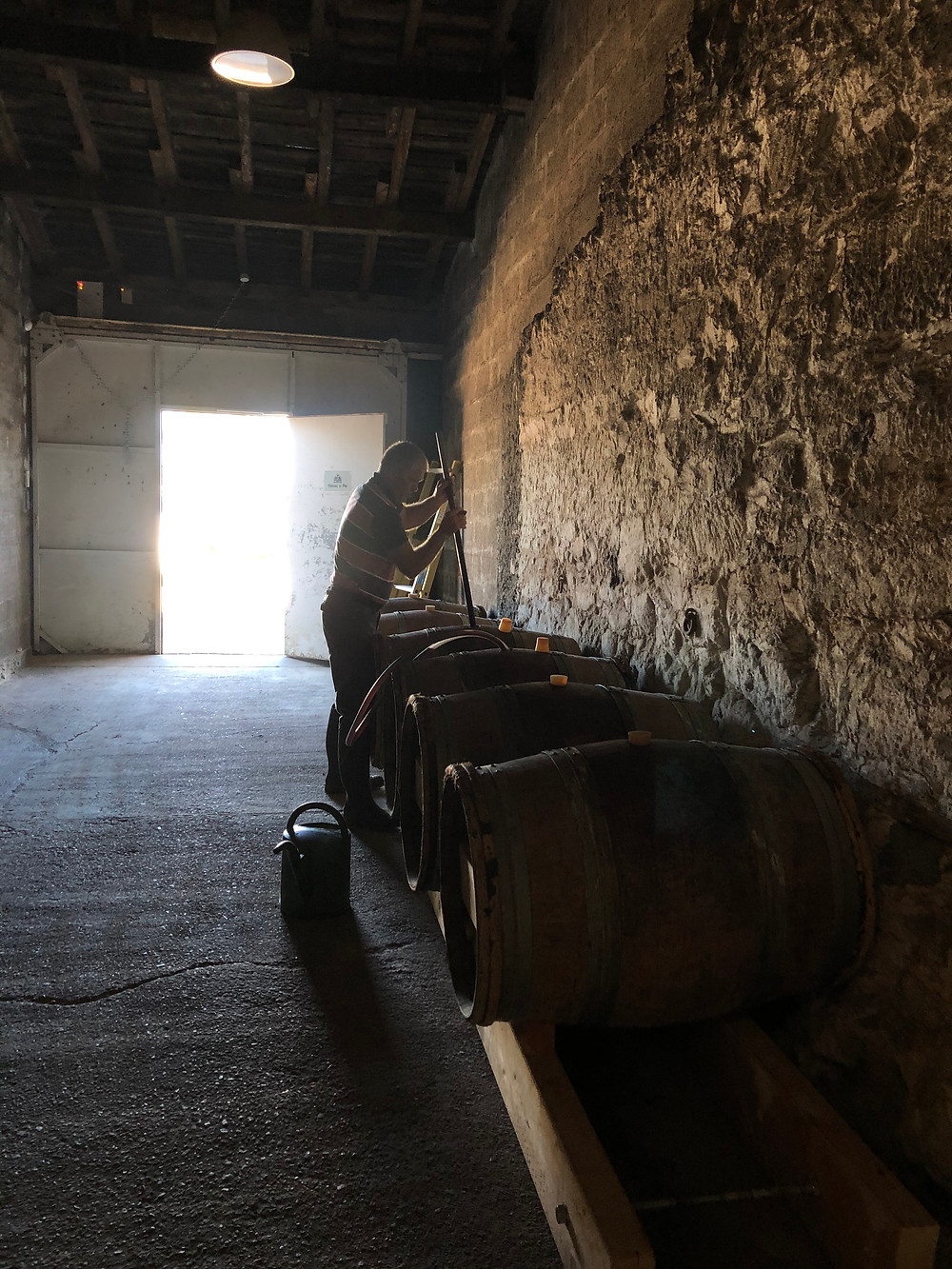 Lees stirring wine dynamization done in a biodynamic winery in Bordeaux at Chateau Le Puy