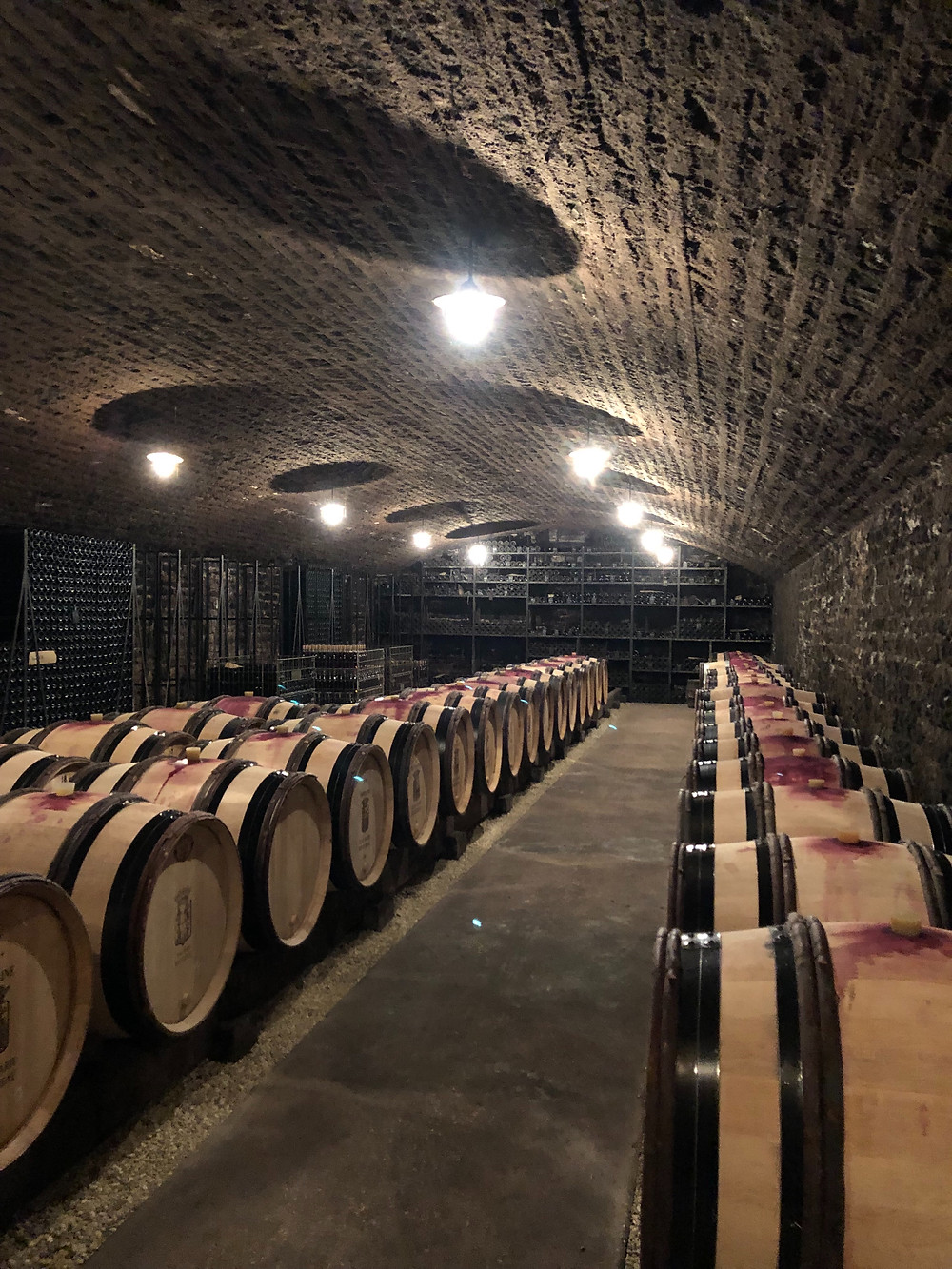 Barrels with Pinot Noir in a cellar in Burgundy during a wine study trip to Meursault and Volnay