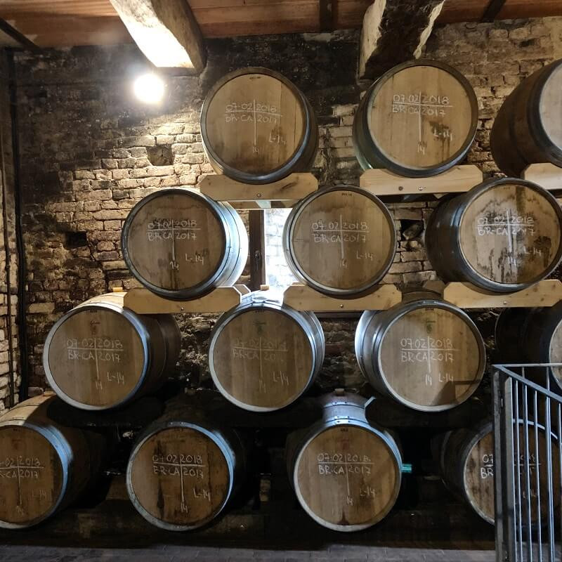 oak barriques in Vietti winery cellar for ageing the Barolo DOCG wine