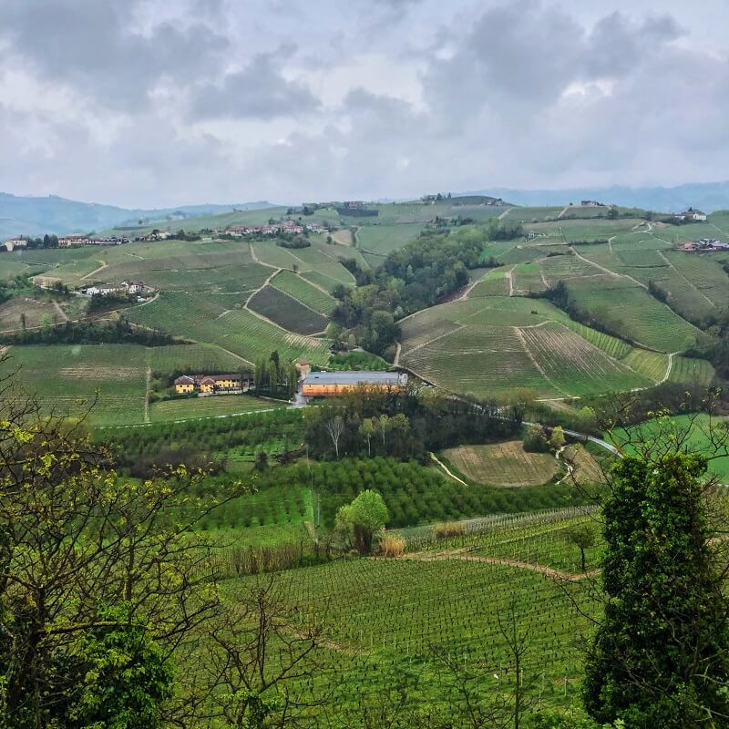 vineyard view from Castiglione Falleto to La Morra from Vietti winery producing Barolo DOCG