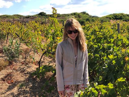 Turkish Island Wines from Bozcaada