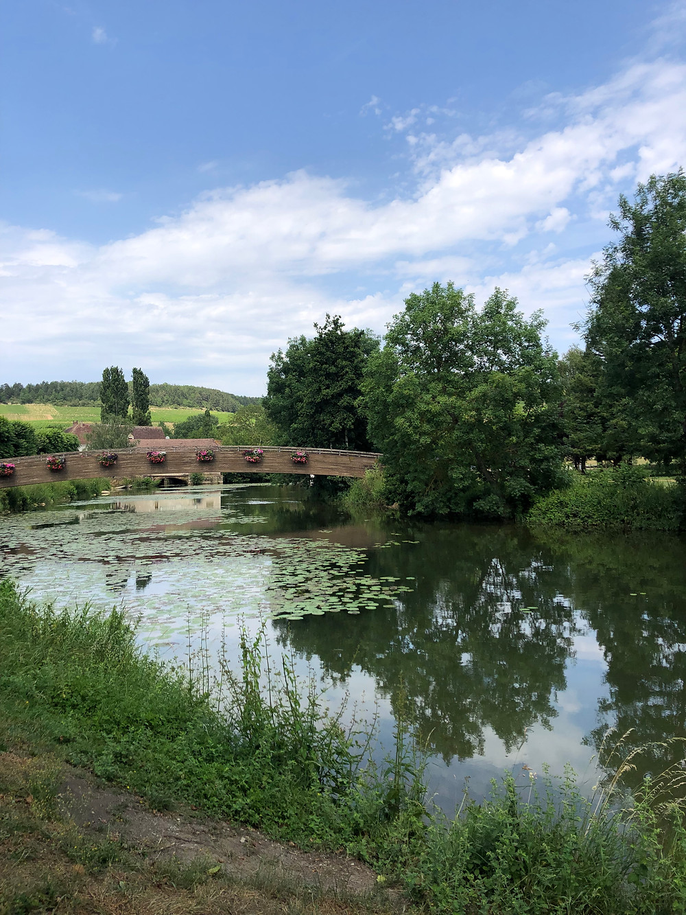 Serein river with a view over the Chablis vineyards on the background