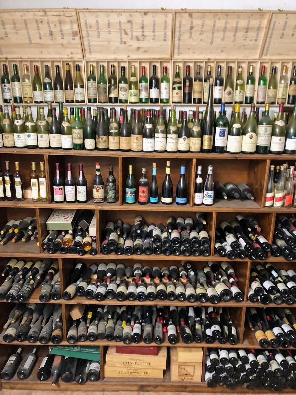 Home wine library collection full of bottles at Elio Altare winery in La Morra