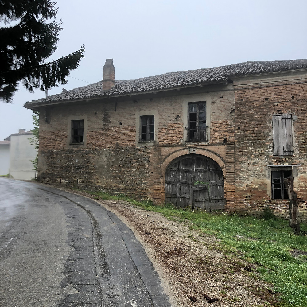 Rainy and foggy day in spring in Piemonte in Alessandria visiting Moscato d'Asti DOCG wine region