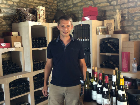 Santenay - the artisan wines of Côte de Beaune