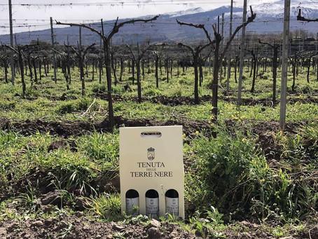 Etna Wine Region. Visiting Tenuta Delle Terre Nere