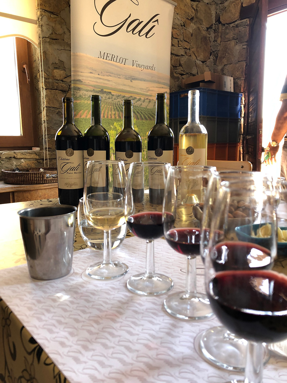 wine tasting at Chateau Gali on the Thrace Wine Route in Trakya Evrese