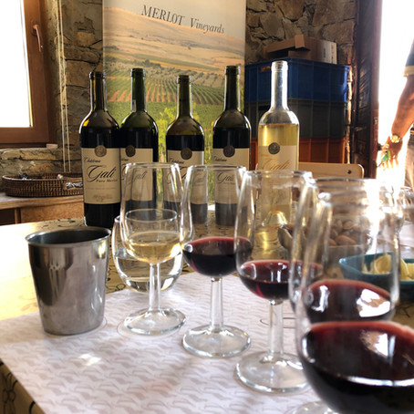 Thrace Wine Route - visiting Chateau Gali