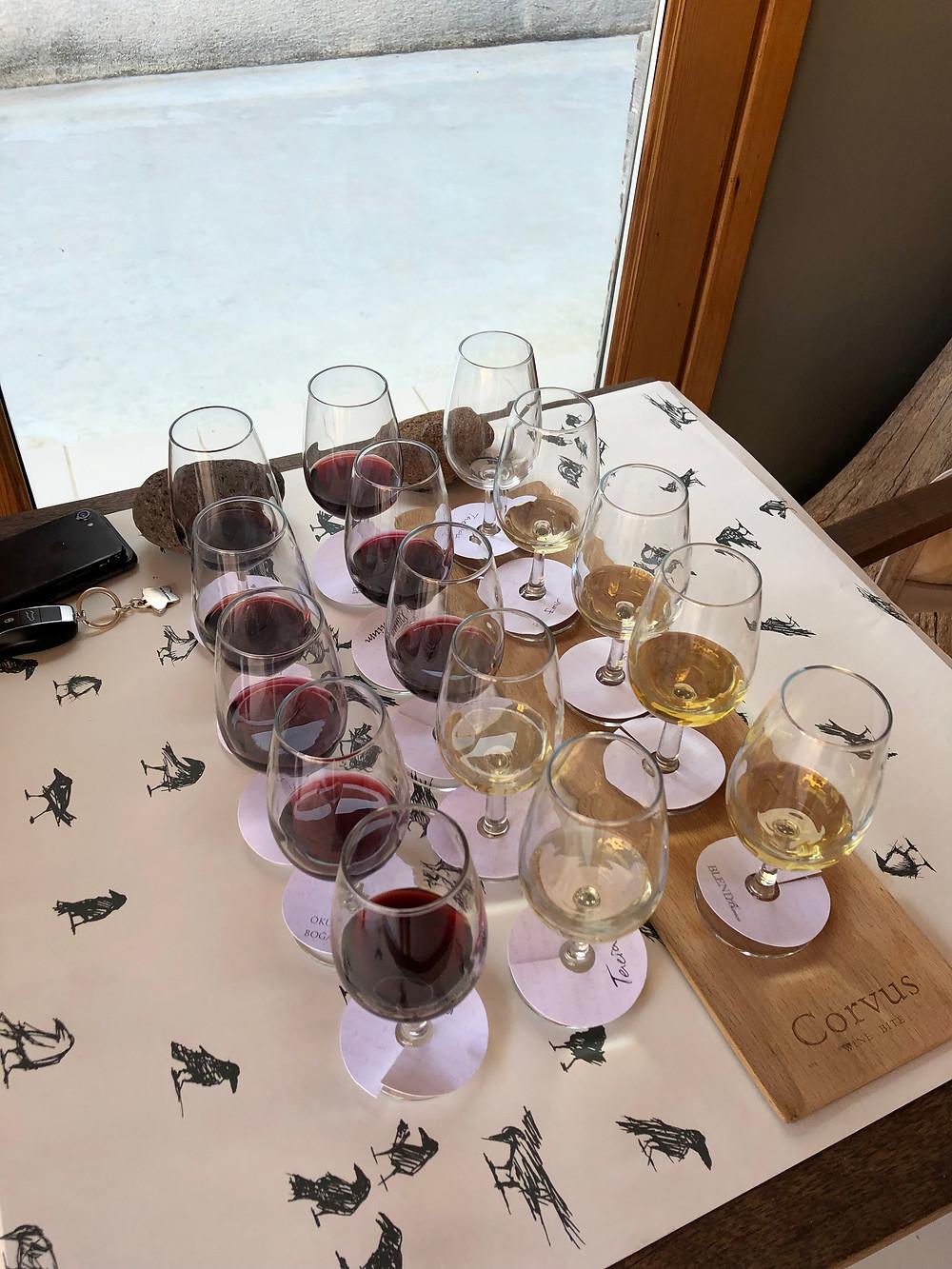 Wine tasting of Turkish wines on Bozcaada island at Wine & Bite Corvus