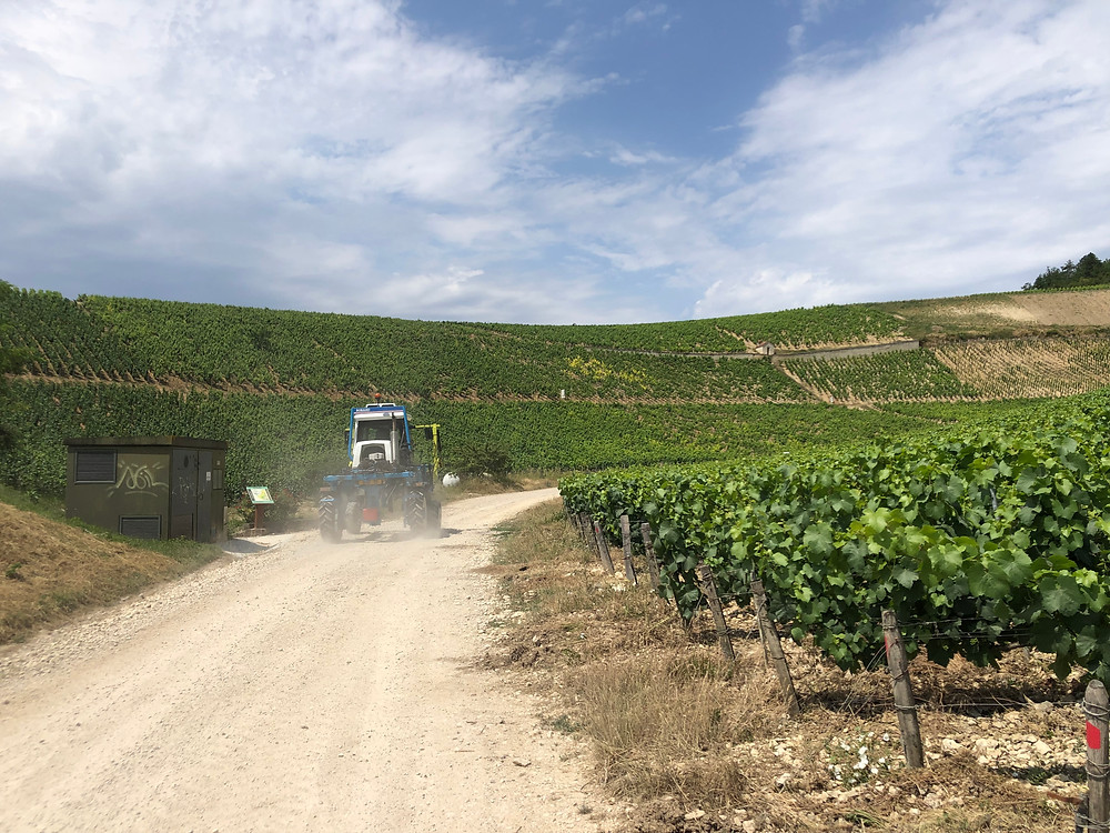 lightweight tractor in Route des Grands Crus in Chablis Burgundy France