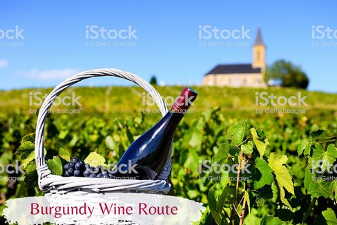 Burgundy Wine Route