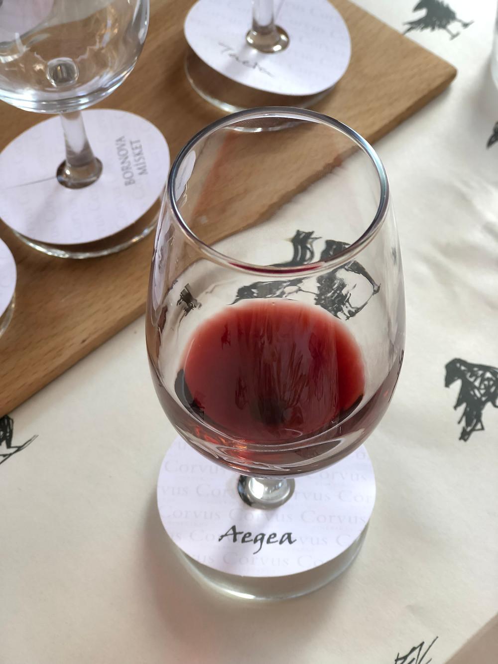 Wine tasting and wine tour on Bozcaada island at Corvus winery tasting local grape varieties at Wine & Bite