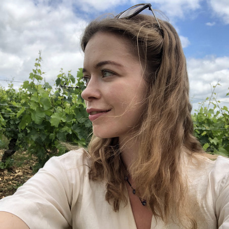 Discovering the climats of Pouilly-Fuissé at Domaine Thibert