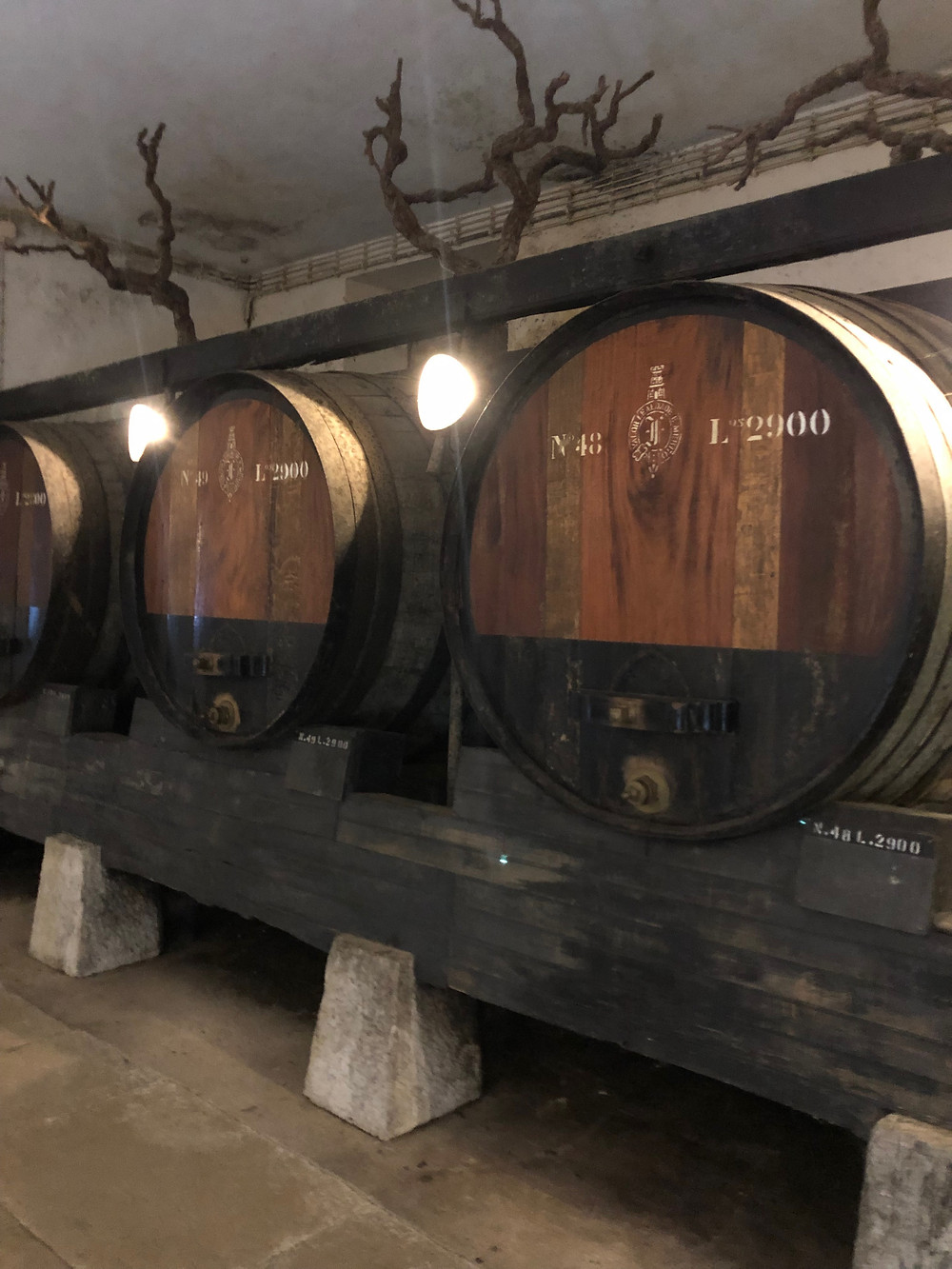 large old oak barrels and casks for Periquita wine ageing at José Maria da Fonseca winery in Setubal wine region