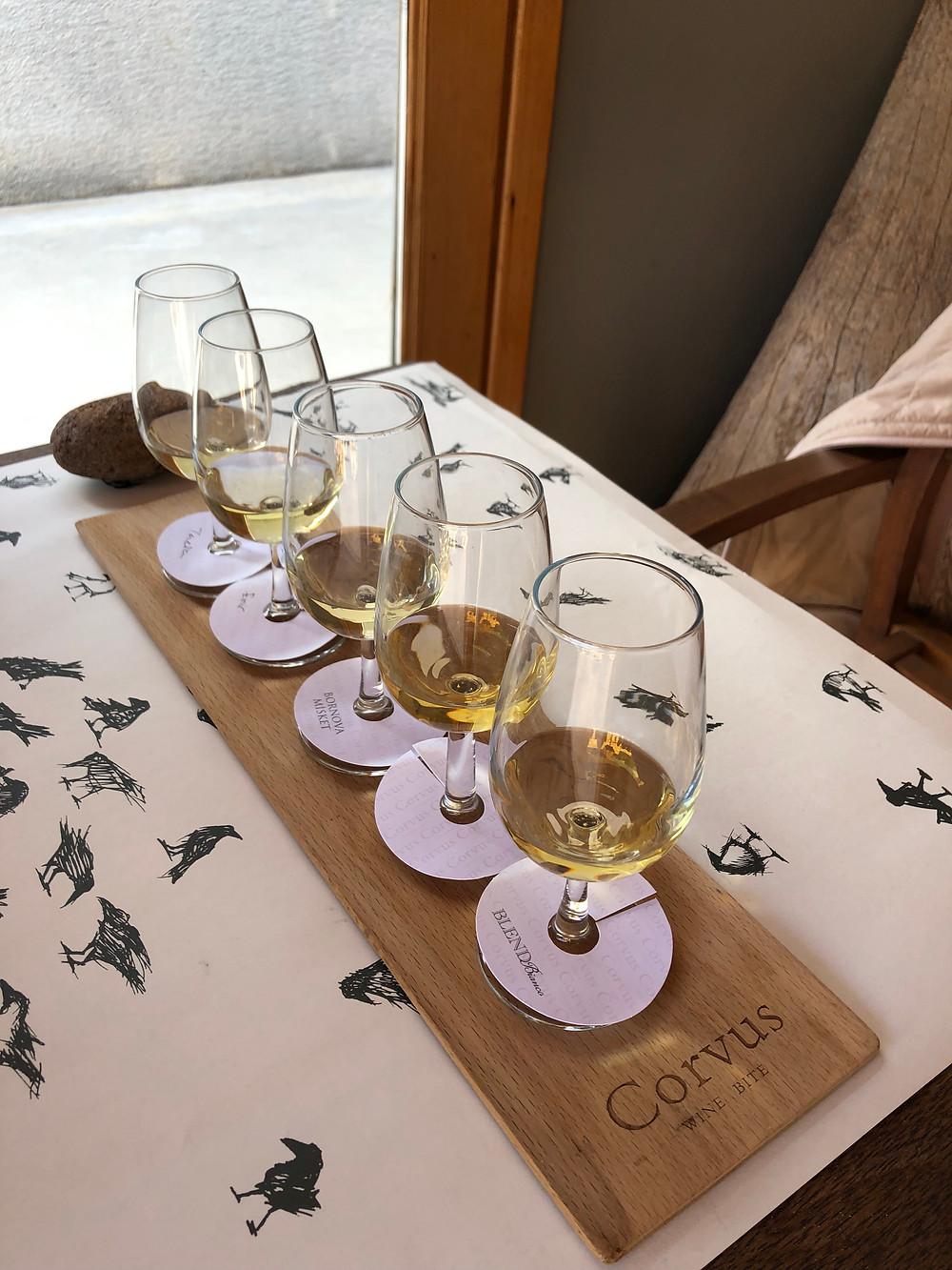 White wine tasting on Bozcaada island at Corvus winery and wine bar