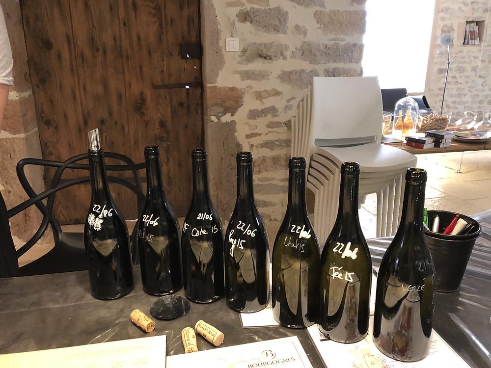 wine tasting at Domaine Thibert Pere et Fils in Pouilly-Fuisse wine region Fuisse village, Southern Macon