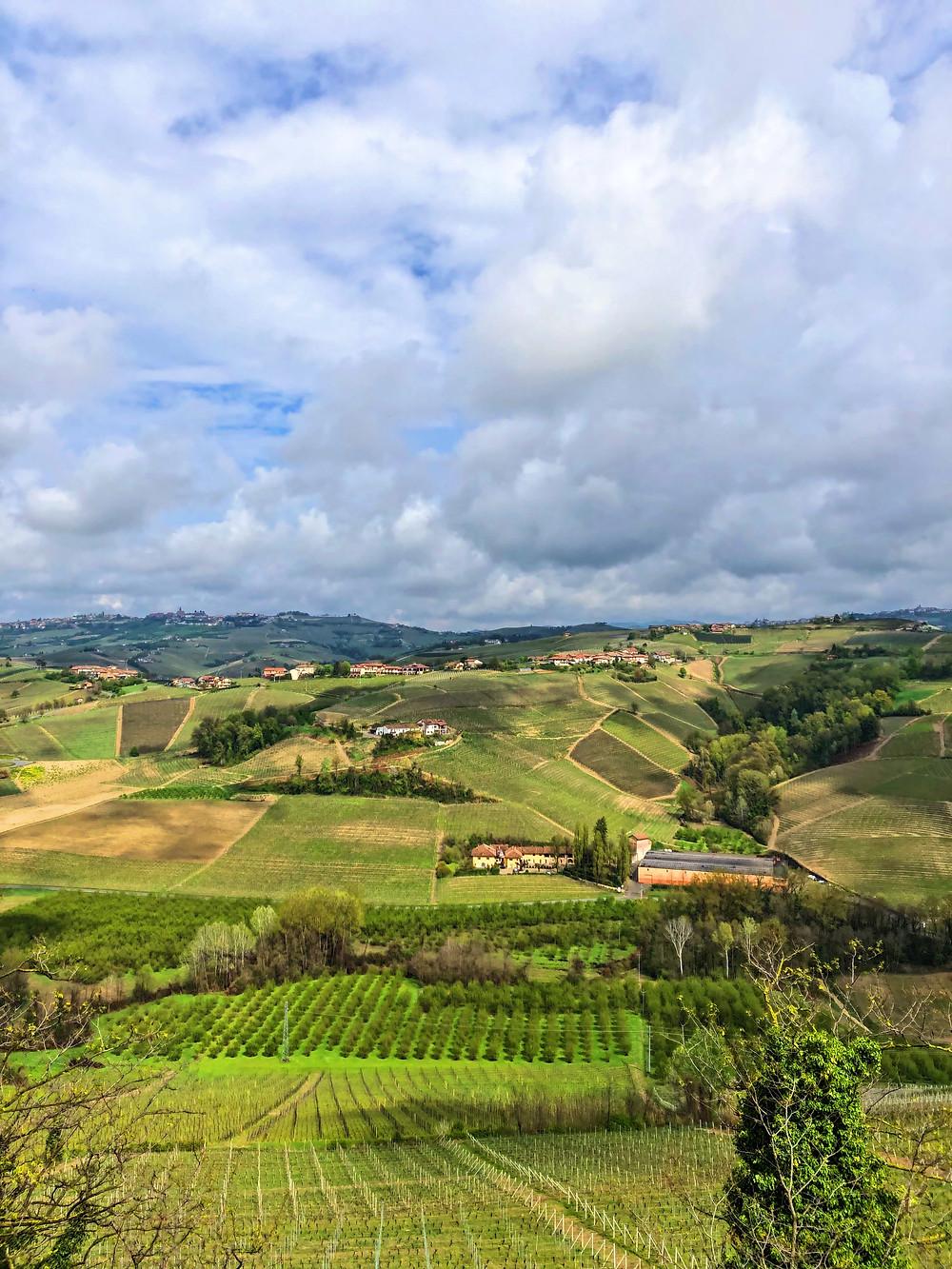 vineyard view from Castiglione Falleto to La Morra from Vietti winery producing Barolo DOCG