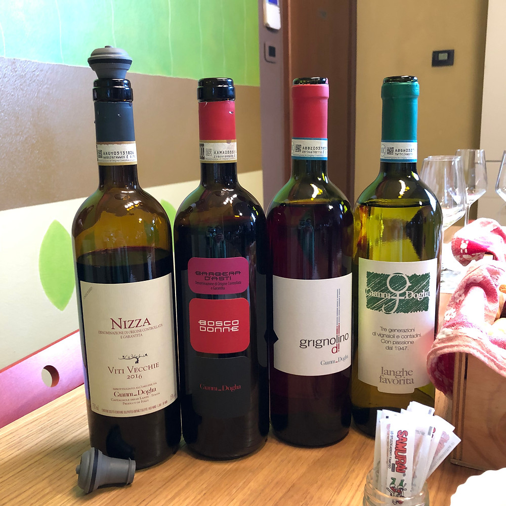 Italian wine bottles from Piemonte, bottles of Nizza DOCG and Barbera d'Asti Bosco Donne wines on a wine tasting experience in Castagnole delle Lanze at Gianni Doglia winery
