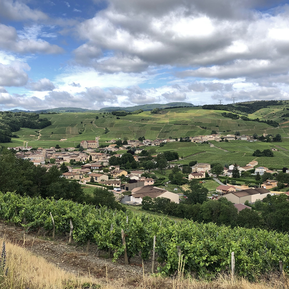 Fuisse village panorama view from the vineyards of Southern Maconnais wine region Burgundy