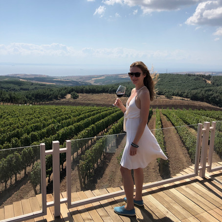 Thrace Wine Route - visiting Chateau Kalpak