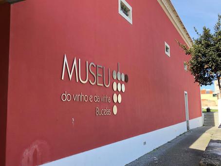 Bucelas Wine Region - the kingdom of Arinto right next to Lisbon