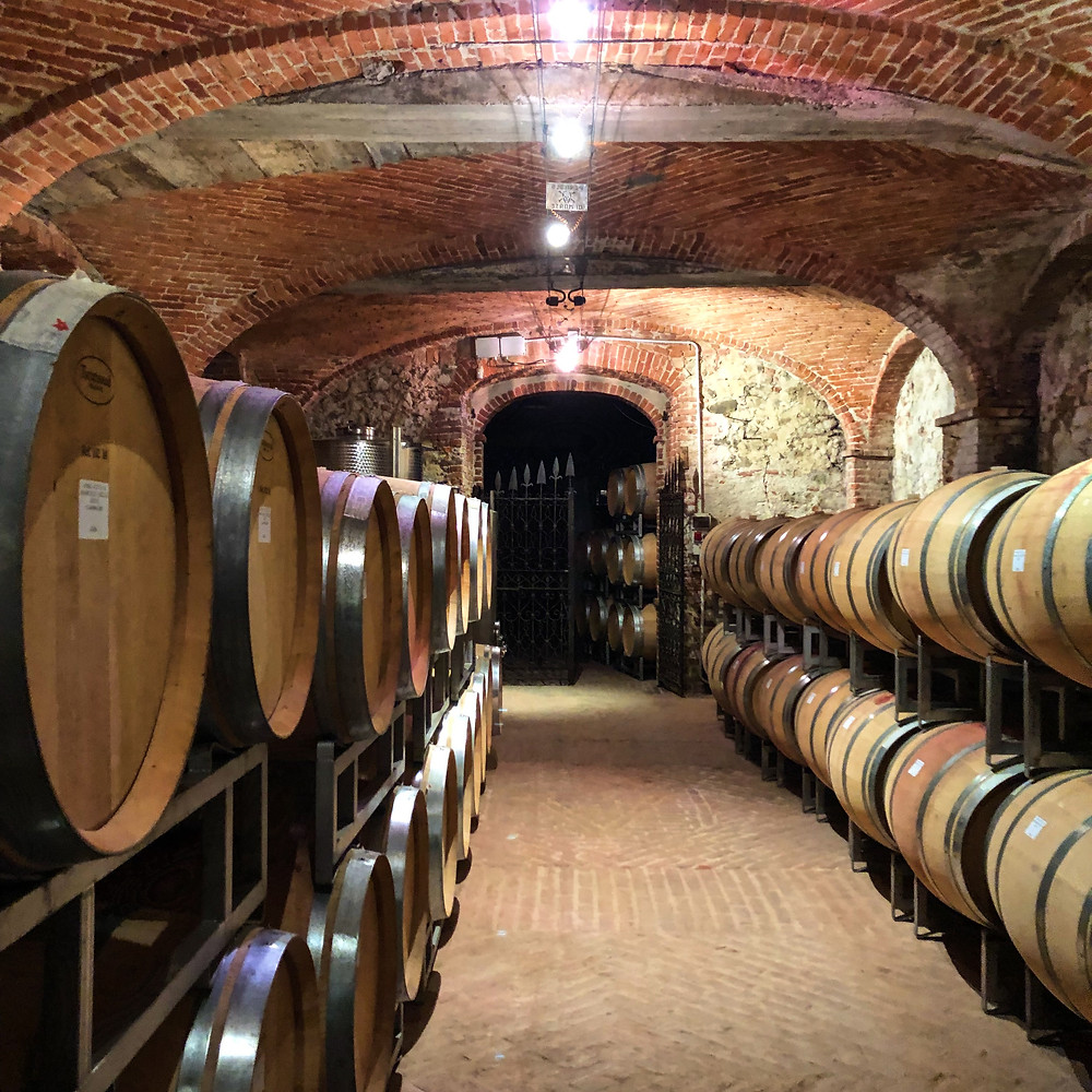 French oak barriques in Elio Altare winery with Barolo wine at La Morra