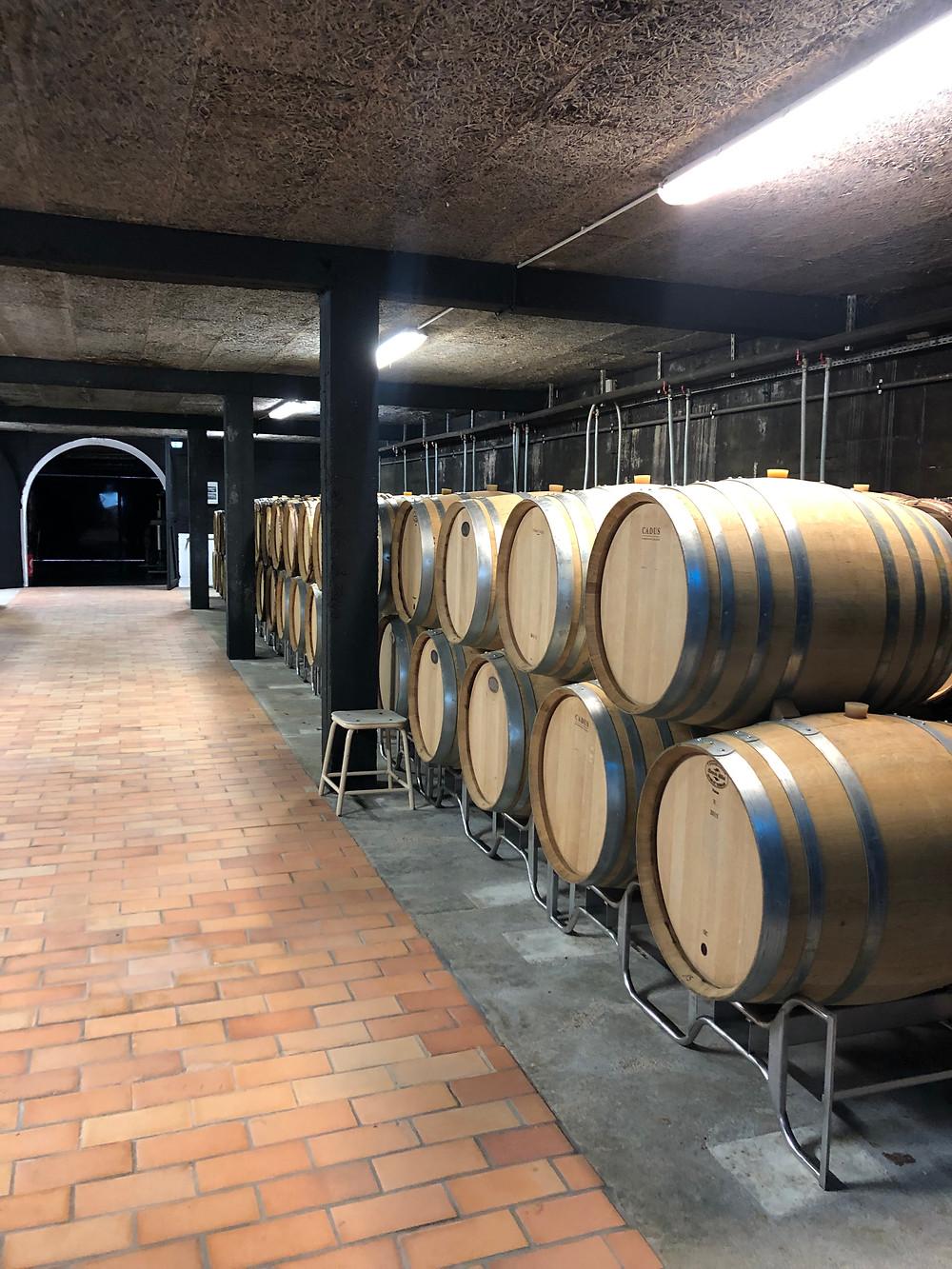 Oak barrels with Chablis wine in Domaine des Malandes wine cellar organic Chablis producer visit