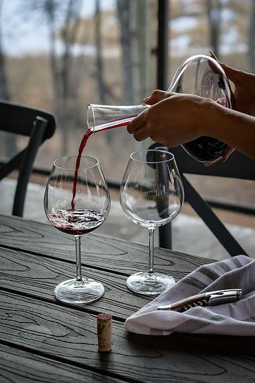 vegan wine tasting in Amsterdam