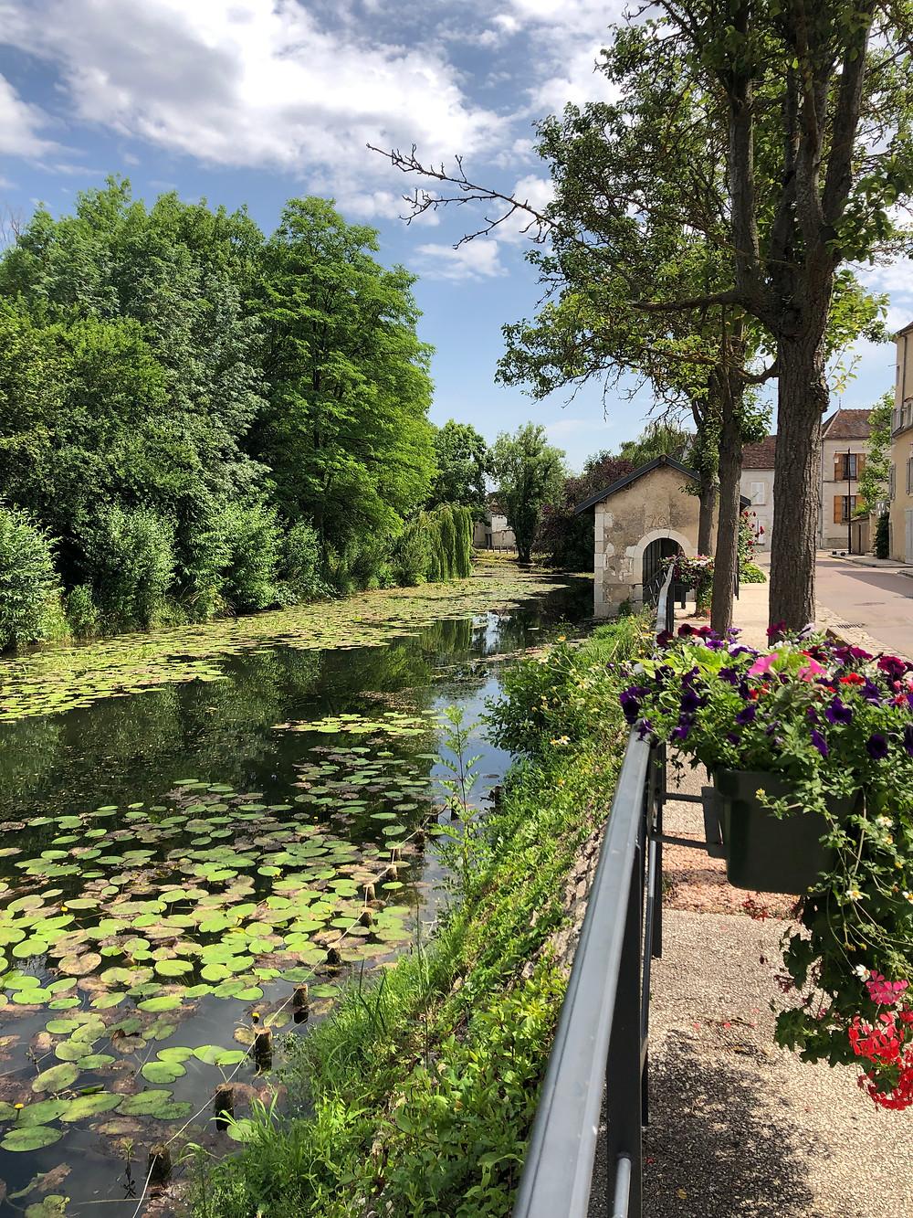 Serein river in Chablis village in Burgundy France