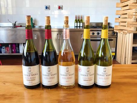 Discover the wines of Etna. Tenuta delle Terre Nere