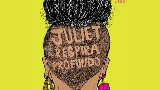 Juliet Takes a Breath Gabby Rivera (Author)