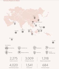 Sanctuary Projects 2019