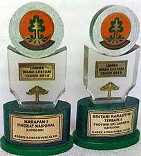 slj award.JPG