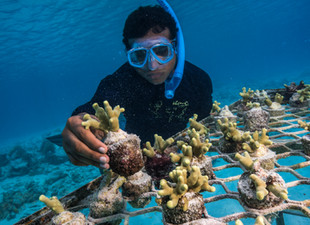 World Oceans Day Is Year-Round At Shangri-La Group