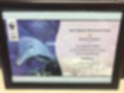 WWF - Dolphin Adoption.jpg