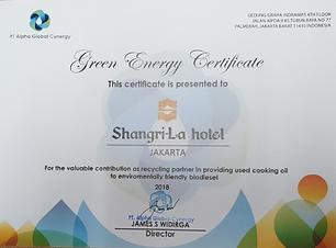 SLJ Green Certificate.png