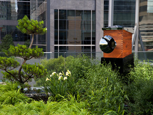 Always Buzzy: Shangri-La Embraces World Bee Day With Hotel Hives, Honey and More