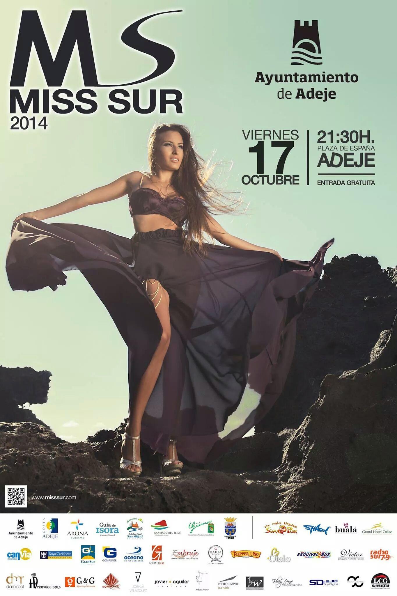 Cartel oficial Miss Sur 2014