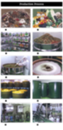 Reishi herbal Enzyme Drink Production Process