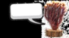 Organic deer horn shaped Reishi