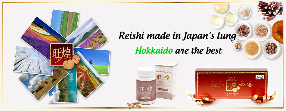 The best reishi mushrooms are grown in Hokkaido
