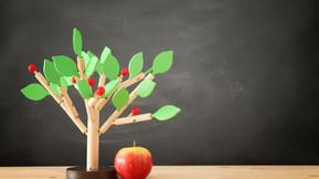 International Summer School on Food Sustainability