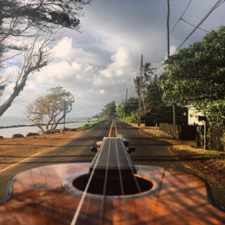 fun ukulele