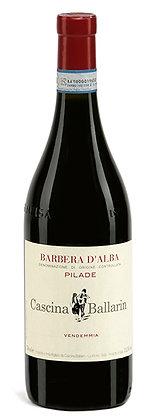 Pilade Barberad'Alba DOC