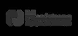 logo-nordstrong-resized