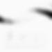 TDC_master_logo_single2016 copy_wh.png