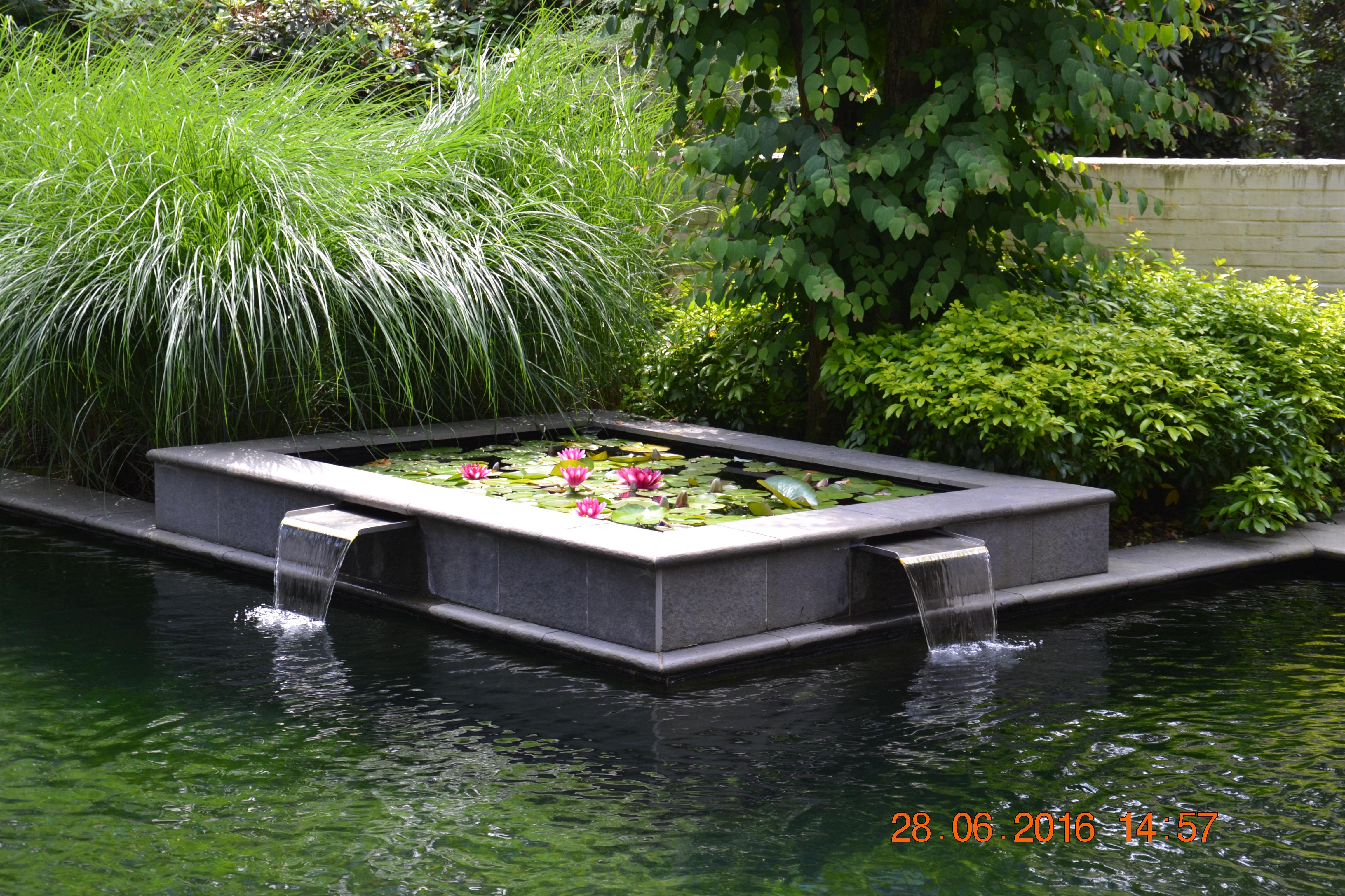 patio met zwemvijver, leliehoek
