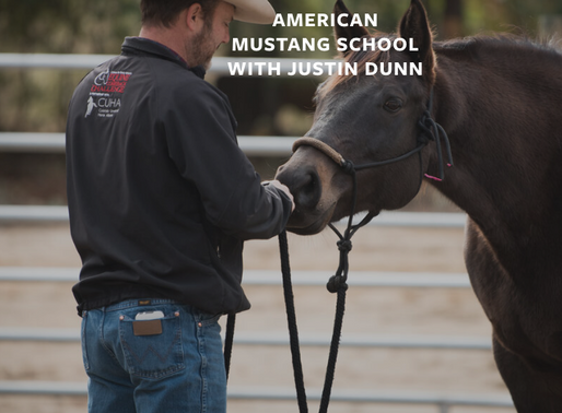 Introduction to Enlightened Horsemanship Clinic