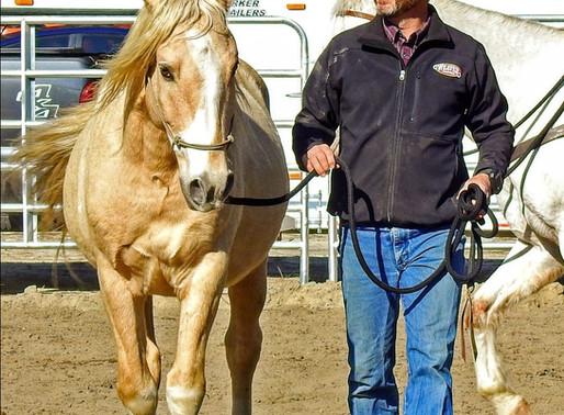 What's your biggest horsemanship challenge right now?