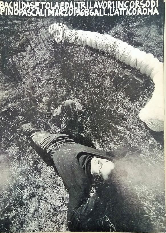 BACHI DA SETOLA ED ALTRI LAVORI IN CORSO DI PINO PASCALI, L'Attico 1968
